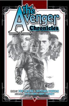 The Avenger: Chronicles LTD HardCover